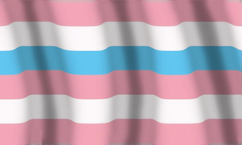 Bandera Bigénero