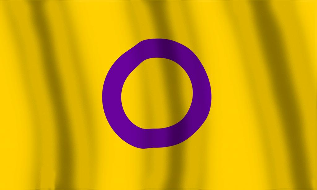 Bandera Orgullo Intersexual