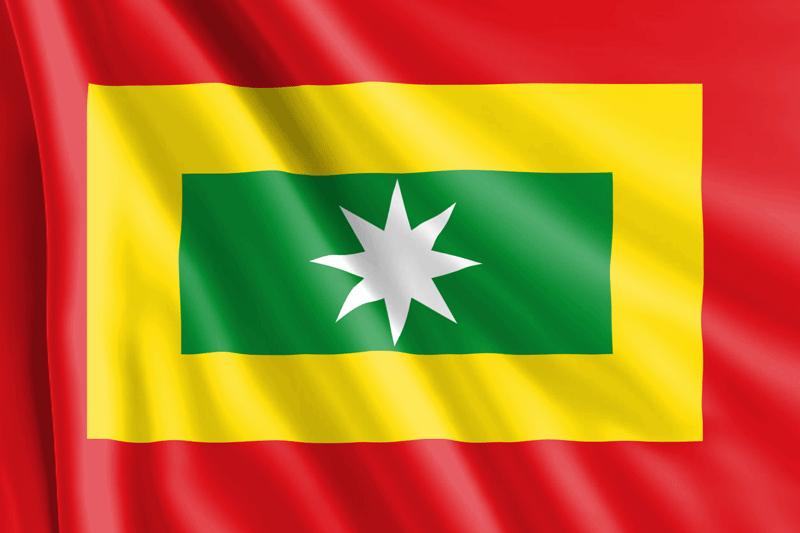 Bandera-de-Nueva-Granada