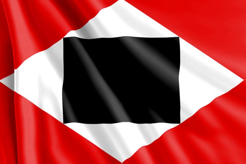 Bandera-Segunda-República-de-Venezuela