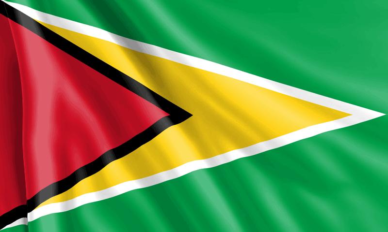 Bandera-de-Guyana