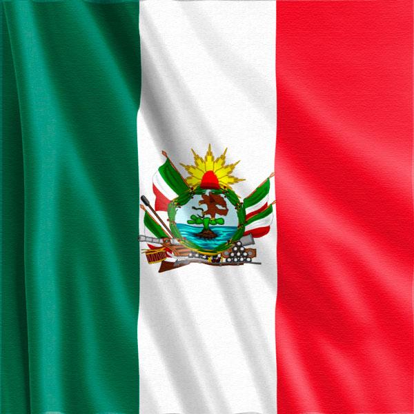 Bandera-Veterana-Batallon-Patria-México
