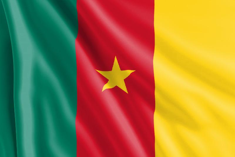 Bandera camerunesa