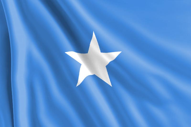 Bandera Somalí